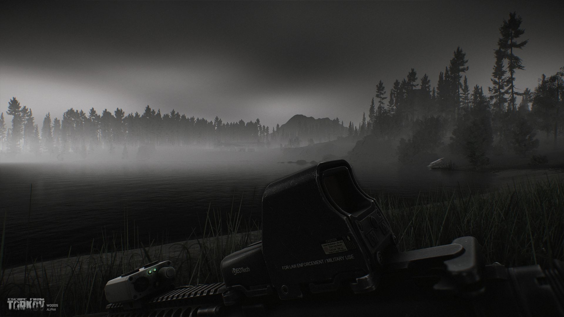 eft_alpha_woods11
