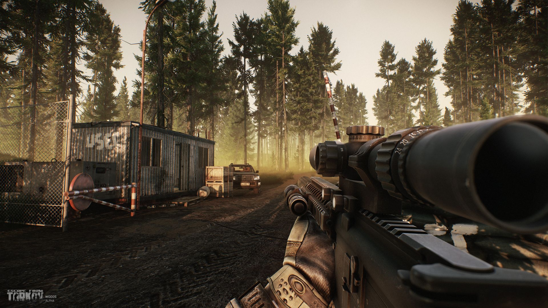 eft_alpha_woods16
